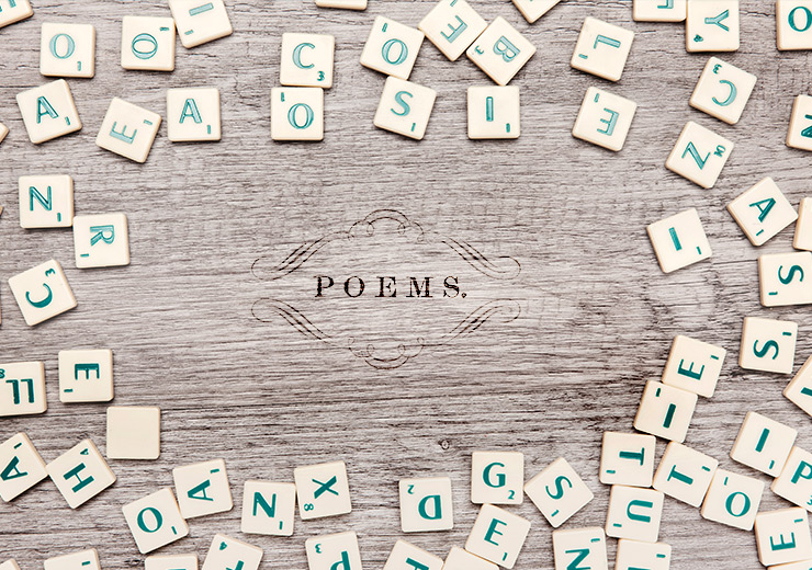 How to Look at a Poem